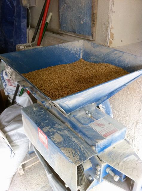 Crushing Grain at Krogh's Brewpub